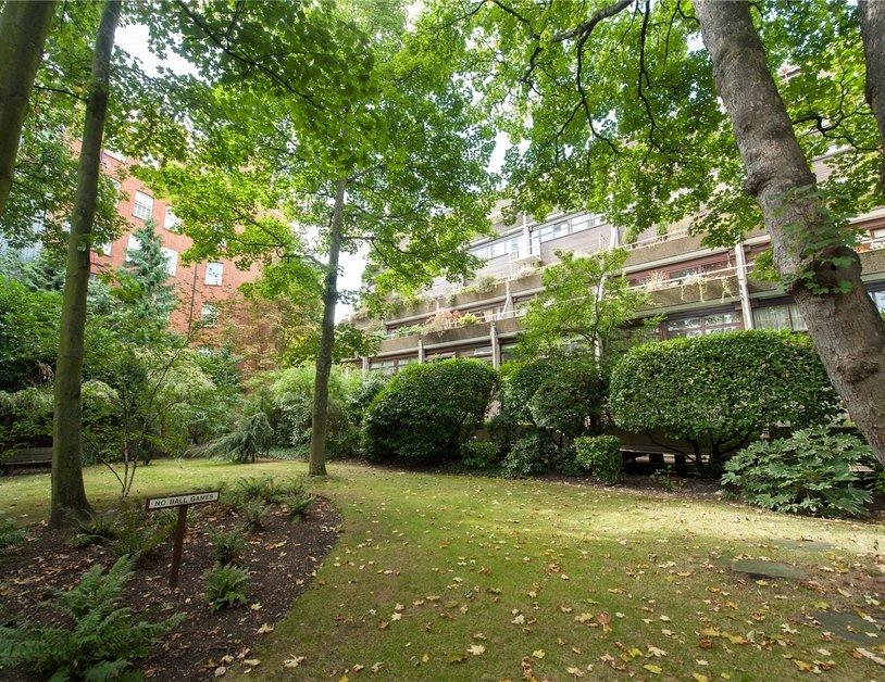 Duplex sold in Park Steps view4