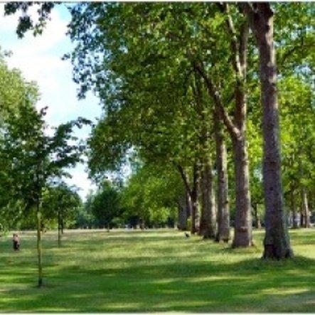 Royal park summer blog news kayandco